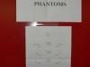 Die Aufstellung + Motto - Phantoms - DDucks 191207
